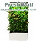 active green wall