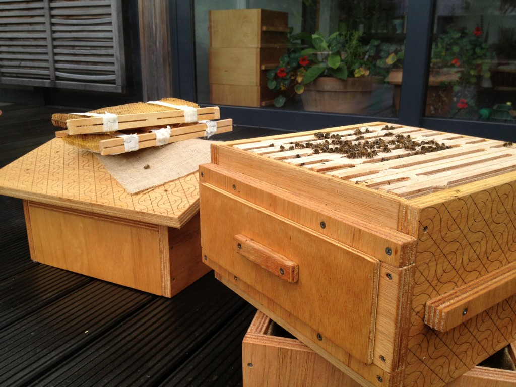 Open Source Beehive outside