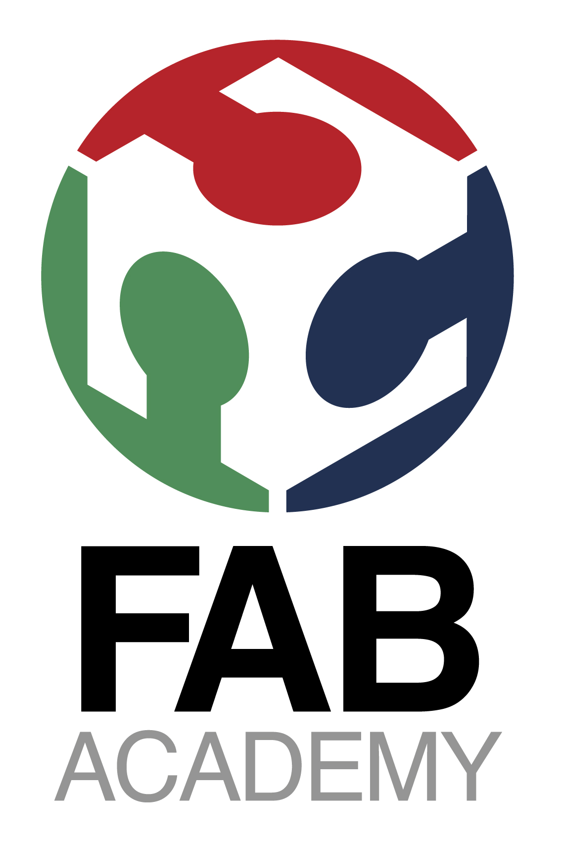 Fab Foundation Launched Fab Academy 2015 Program Open